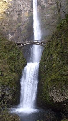 Multnomah falls world water, travel box, scenery pictures, gothic architecture, architecture design Scenery Pictures, Nature Pictures, Beautiful Waterfalls, Beautiful Landscapes, Animiertes Gif, Multnomah Falls, Cool Tumblr, Les Cascades, Photo Awards