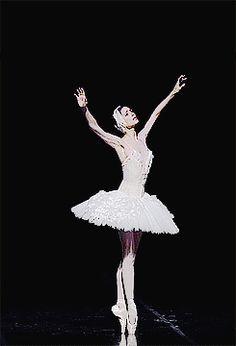 """Bolshoi prima ballerina Svetlana Zakharova dancing Fokine's The Dying Swan (x)  """