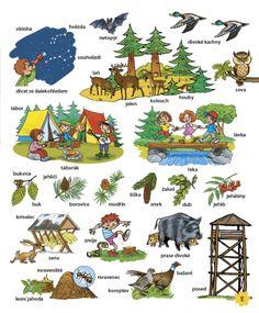 Velká kniha českých slov • Infoa Diy For Kids, Diy And Crafts, Teaching, Comics, School, Animals, Animales, Animaux, Animal