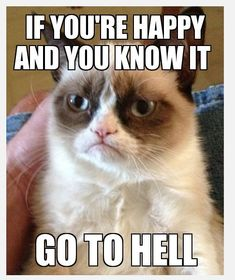 Grumpy Cat Pictures | All right? new Kris brand´s post some cracking Grumpy cat moments ...