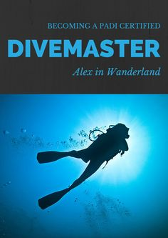 All of my thoughts and best advice on becoming a PADI Divemaster in one convenient location | Alex in Wanderland