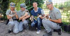Ecco la Polizia per i diritti degli animali in Norvegia. E in Italia?