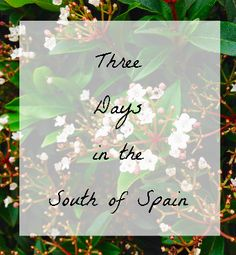Three days in the South of Spain // I'm Just Jess