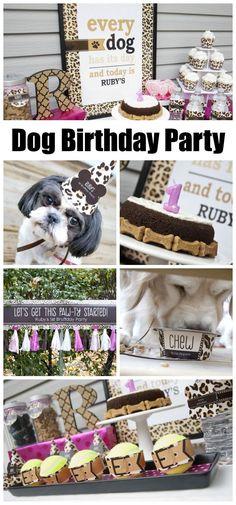 Yes, I celebrate my dog's birthday! http:/I/pawsandprada.uk/yes-celebrate-dog-birthday-no-im-not-crazy/