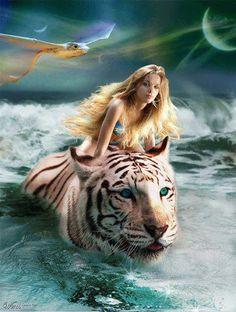 Ride The Wild Tiger