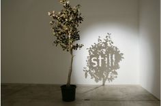 Shadow art - a sculpture that when illuminated creates totally different art behind it