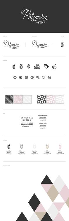 Prismera logo and quick brand guide, designed by Meg Lewis for Aeolidia.