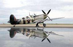 Spitfire Twin