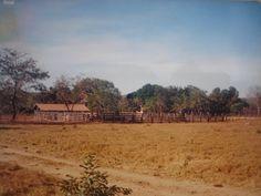 Nossa saudosíssima ex fazenda em Gurupi - GO (Hoje Tocantins)