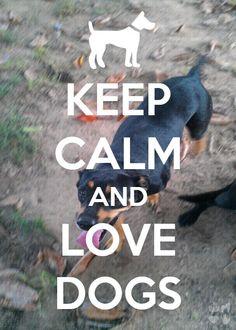 loving dogs forever