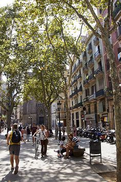 Passeig del Born, Barcelona, Catalonia, Spain.  All the Passeigs are gorgeous here.
