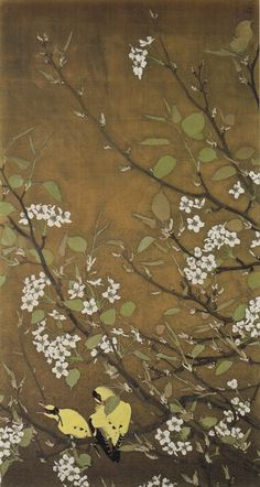 梨花 Isson Tanaka - so pretty! Japanese Artwork, Japanese Painting, Plant Painting, Art Japonais, Painter Artist, Korean Art, Tropical Art, Plant Illustration, Art For Art Sake