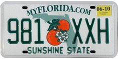 """The official Florida state license plate.  Florida's nickname is the """"Sunshine State"""". Central Florida is known as the lightning capital of the United States, as it experiences more lightning strikes than anywhere else in the country."""