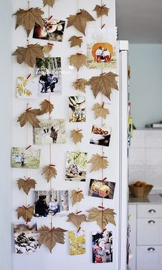 We love this fun fall decor for the home. Scatter your favorite memories among Mother Nature to add a rustic feel.
