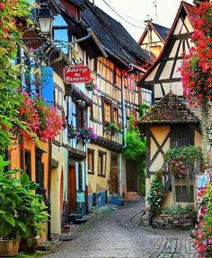 Colmar, Alsace - Incredible Honeymoon Destinations You Haven't Thought Of - Photos