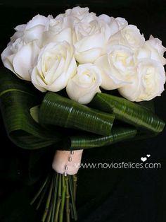 Rosas blancas sobre base de aspidistras