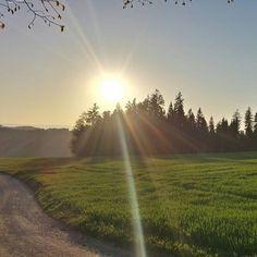 This is how beautyful my home is. #schweiz #suisse #swizzera #suiza #switzerland #emmental #emmentalvalley #home #zuhause #sunset #sonnenuntergang #nature #natur by _chicu_