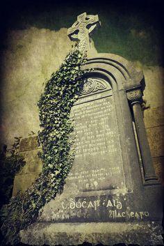 Grungy Gravestone   Flickr - Photo Sharing!