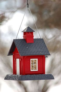 bird house,  this one is in my backyard. One like it is in my sons backyard. It brings so many birds