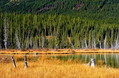 """""""Lazy Fall afternoon"""" - Photograph at BetterPhoto.com"""