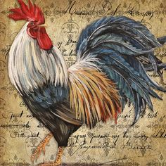 Amazon.com: Square Throw Pillow Case Decorative Cushion Cover/Case Zippered Pillowcase With Vintage Rooster Art 18 X 18 Inch(Twin Sides): Home & Kitchen