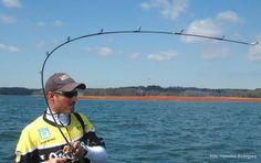 Jeff Kriet está a pescar com um jerkbait, a cana é a ideal, com uma acção quase total