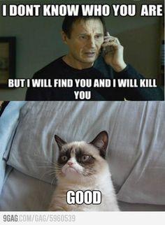 HAHAHAHA grumpy cat! :p