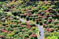 Shiofune Kannon, gorgeous temple grounds