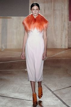 Roksanda Ilincic Autumn / Winter 2013