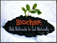 Biochar: Adding Nutrients To Your Soil Naturally – Page 6 : Biochar is but one way of adding nutrients to soil. Never heard of biochar? That makes sense because it is an ancient art of adding nutrients to soil. Organic Soil, Organic Fertilizer, Organic Gardening, Gardening Tips, Garden Soil, Raised Garden Beds, Raised Beds, Farm Gardens, Outdoor Gardens