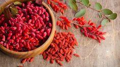 Bayas adelgazantes combaten la diabetes y presión arterial - http://www.notimundo.com.mx/salud/bayas-adelgazantes/