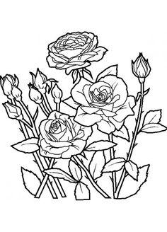 ramos de flores de natal com laço para pintar - Pesquisa Google