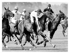 Global Gallery 'Polo Players, England' by Robert Hallam Framed Photographic Print Size: Salvador Dali Art, Polo Horse, Art Commerce, Sport Of Kings, Cool Posters, Stretched Canvas Prints, Cool Art, Awesome Art, 5 D