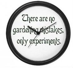 There are no gardening mistakes, only experiments Garden Plaques, Garden Signs, Outdoor Classroom, Garden Quotes, Green Nature, Easy Garden, Sign I, Growing Plants, Dream Garden