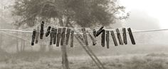 Clothespins on a Line (c)Kurt Stier/Corbis