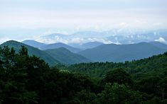 The Blue Ridge Mountains as seen from the Blue Ridge Parkway.  USA