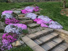 # 60 + wonderful beautiful front yard rock garden ideas - All About Garden Yard Ideas, Lawn And Garden, Garden Paths, Garden Art, Landscaping With Rocks, Front Yard Landscaping, Back Gardens, Small Gardens, Outdoor Plants