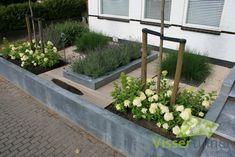 Sleek robust front garden: modern Garden by Visser Tuinen Small Front Gardens, Back Gardens, Outdoor Gardens, Garden Cottage, Home And Garden, Low Maintenance Garden, Small Garden Design, Plantation, Dream Garden