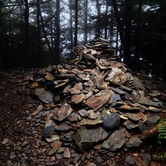 The 10 Best Hikes in the Smokies - Rock/Creek Chronicle