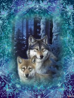 Cute Wolf Drawings, Cute Animal Drawings Kawaii, Cute Cartoon Animals, Wolf Images, Wolf Pictures, Beautiful Wolves, Animals Beautiful, Wolf Mythology, Wolf Howling At Moon