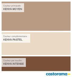 Peinture Intérieure Couleur | Castorama