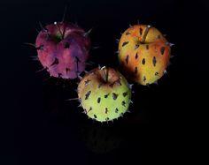 forbidden fruits marco nones 1