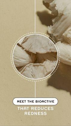 Qui a dit que la science et les stories ne faisaient pas bon ménage ? La preuve en est avec cette création au close-up très intéressant. L'effet loupe donne un aspect scientifique à la story et permet de mettre en avant un ingrédient-clé du produit de façon ludique. Creations, Science, Inspiration, Magnifying Glass, June, Biblical Inspiration, Inspirational, Inhalation