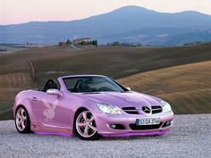 Purple playboy Bunny Car