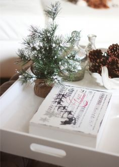Our Holiday Décor Revealed- Holiday coffee table styling: mini tree, mercury glass bottles, cinnamon pine cones, and a decorative remote box.