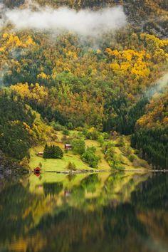 Norwegian Mountain Farms. Take me here now please.