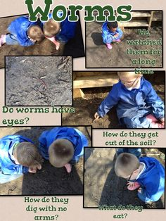 This exploration has kicked started our next theme! The questions they asked were brilliant!