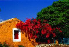 Colorful Kephalonia