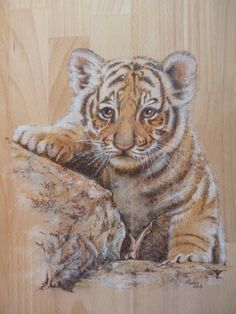 Tiger cub in pyrography and paint. Artist: Manon Massari…