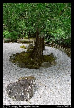 Zen garden for the front yard maybe?